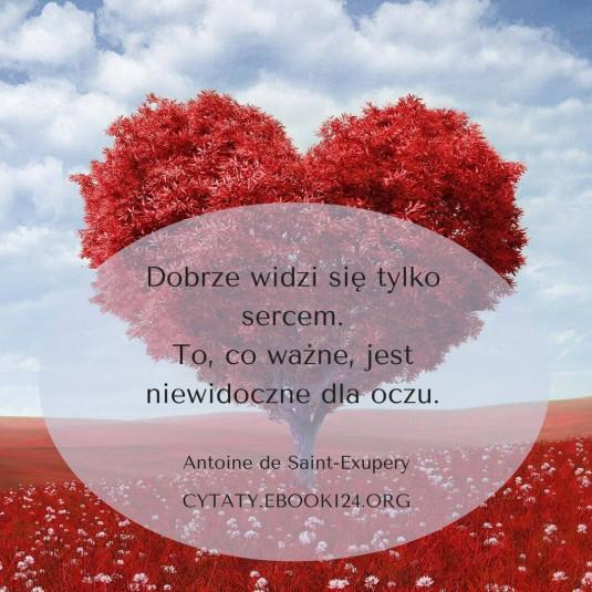 Antoine de Saint-Exupery cytat o tym co ważne