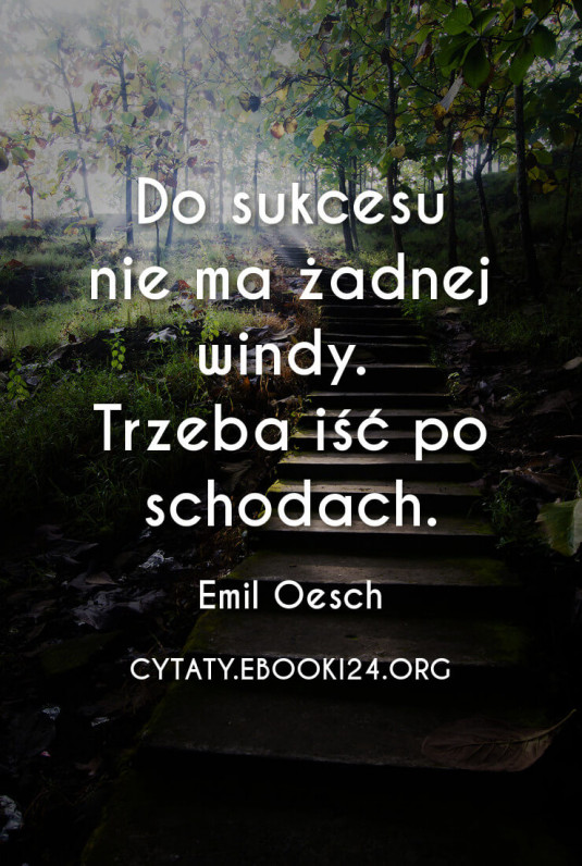 Emil Oesch Cytat O Sukcesie Cytaty Motywacyjne