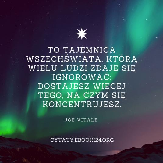 Joe Vitale cytat o tajemnicy wszechświata