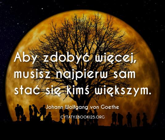 Johann Wolfgang von Goethe cytat o tym jak zdobyć więcej
