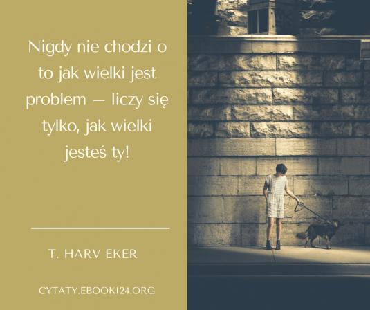 T. Harv Eker cytat o problemach