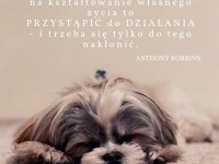 Anthony Robbins cytat o kształtowaniu własnego życia