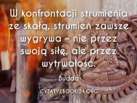 Budda cytat o wytrwałości