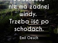 Emil Oesch cytat o sukcesie