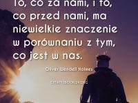 Oliver Wendell Holmes cytat o tym co ważne