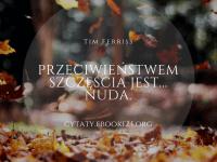 Tim Ferriss cytat o szczęściu