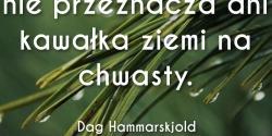 Dag Hammarskjold cytat o utrzymywaniu porządku