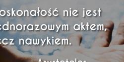 Arystoteles cytat o doskonałości