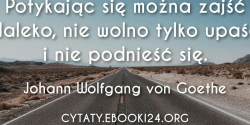 Johann Wolfgang von Goethe cytat o wytrwałości