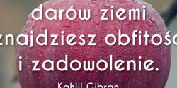 Kahlil Gibran cytat o obfitości i zadowoleniu