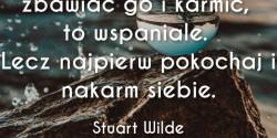 Stuart Wilde cytat o zbawianiu świata